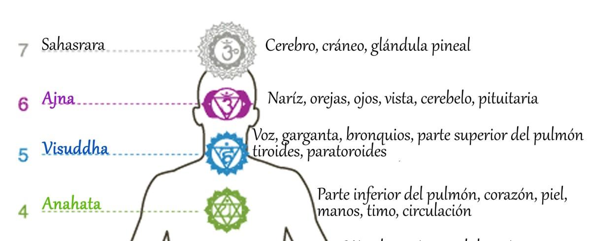 Excepcional Los 7 chakras y consejos sobre cómo activarlos – Amare KR36