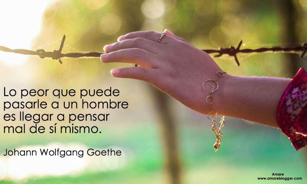frases de Johann wolfgang Goethe