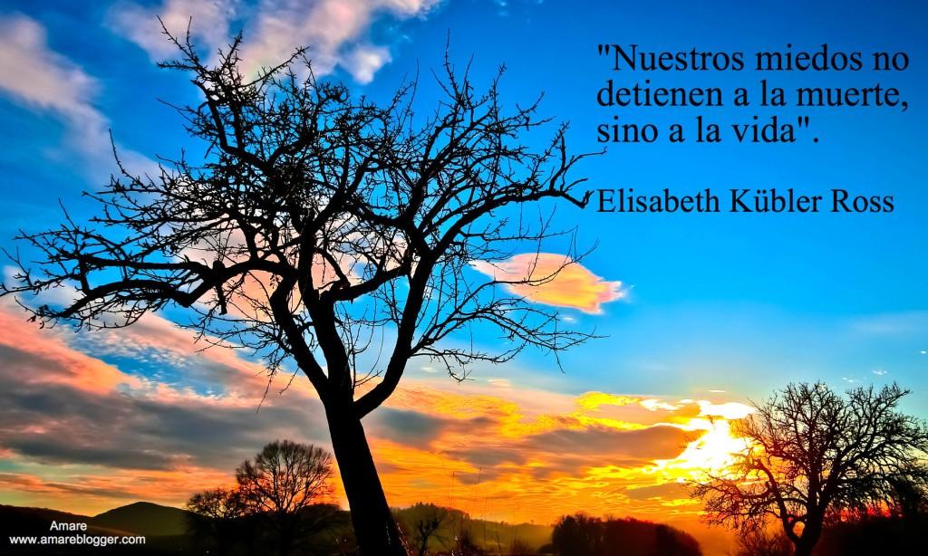 frases de Elisabeth Kubler Ross